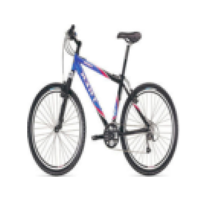 animated_cal_bike_sample