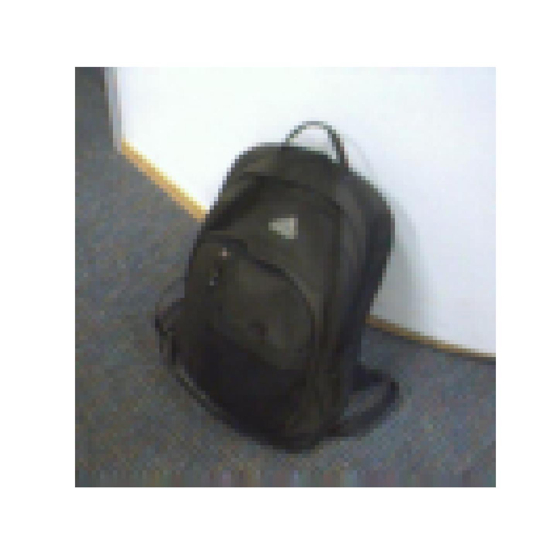 animated_webcam_backpack_sample